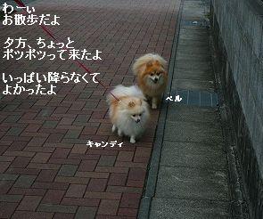 s-IMG_1182.jpg