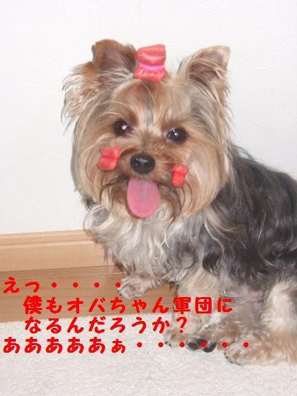 2007_0725no10018.jpg