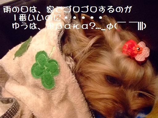 2007_0418no10003.jpg