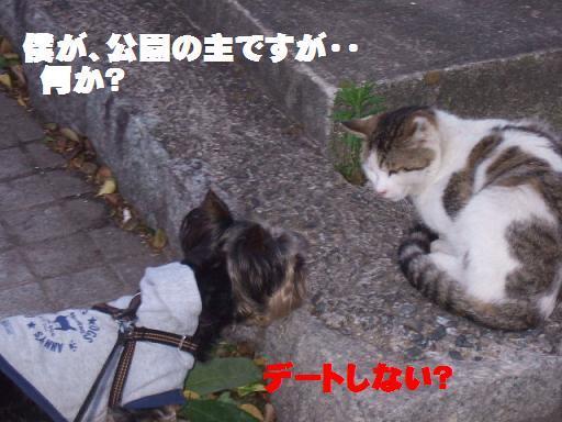 2007_0510no10008.jpg