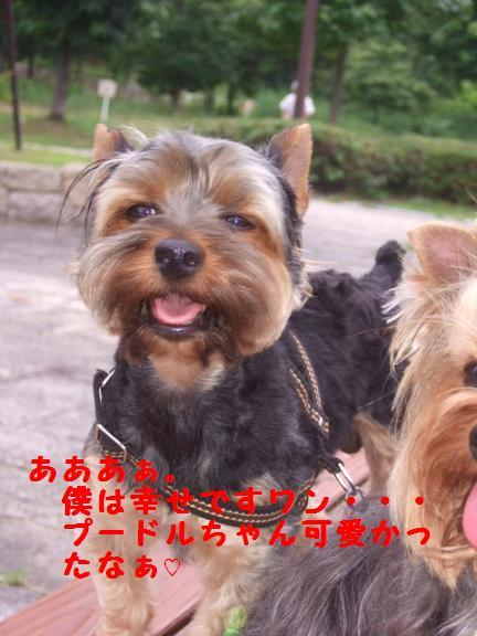 2007_0708no10018.jpg