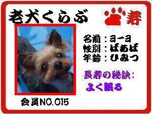NO,15ヨーヨ080729