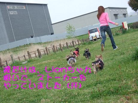 2007_0413no10046.jpg