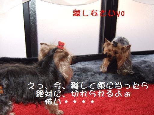 2008_0407no10009.jpg