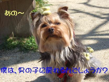2007_0301no10016.jpg
