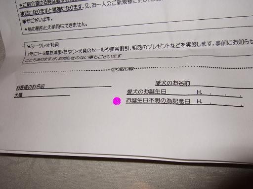 2008_0416no10028.jpg