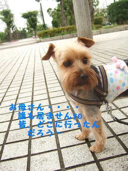 2007_0702no10001.jpg