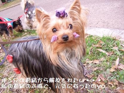 2007_0119no10026.jpg