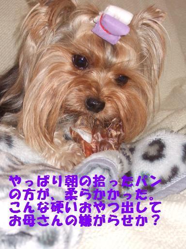 2007_1018no10011.jpg