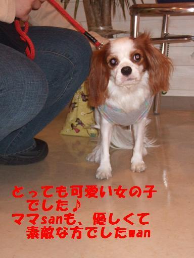 2007_1014no10011.jpg