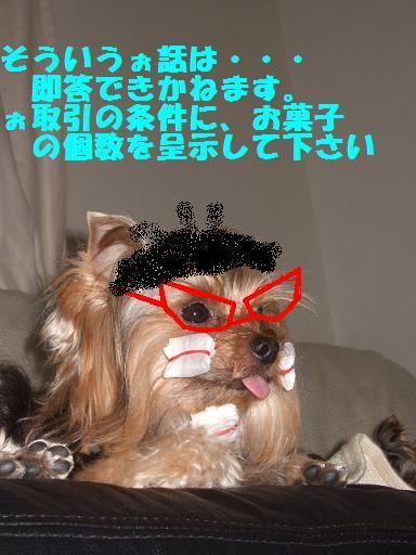 2007_1014no10036.jpg