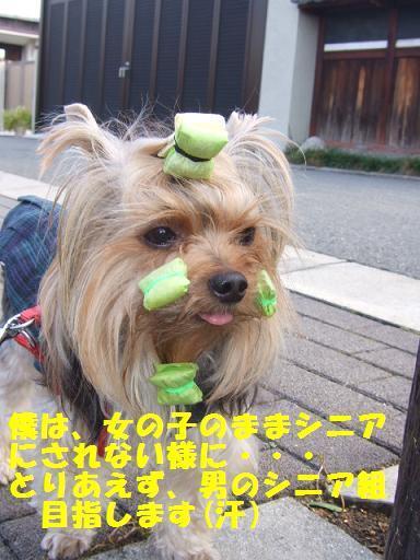 2007_1024no10004.jpg