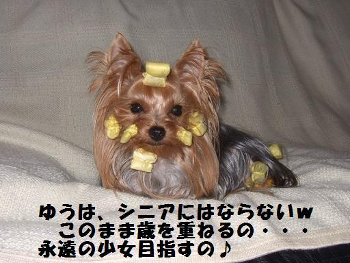 2007_1024no10023.jpg