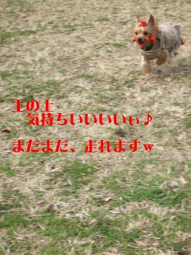 2008_0119no10118.jpg