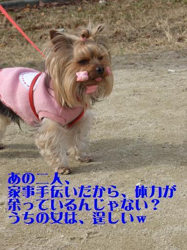 2008_0119no10107.jpg