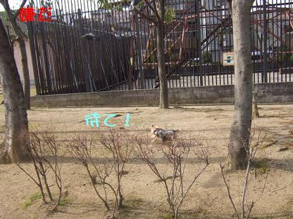 2007_0128no10007.jpg