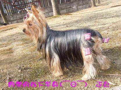 2007_0128no10009.jpg
