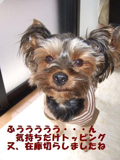 2007_1112no10026.jpg