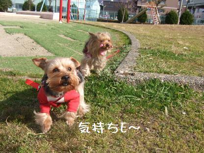 2007_0125no10003.jpg