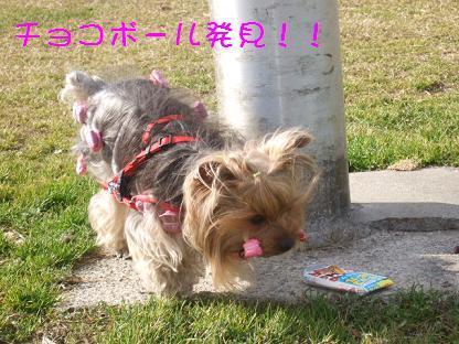 2007_0125no10005.jpg