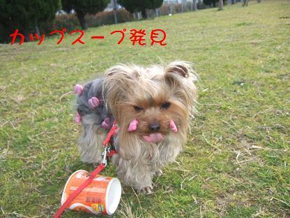 2007_0125no10009.jpg