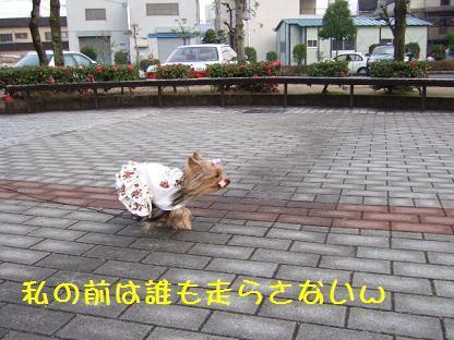 2007_0106no10012.jpg