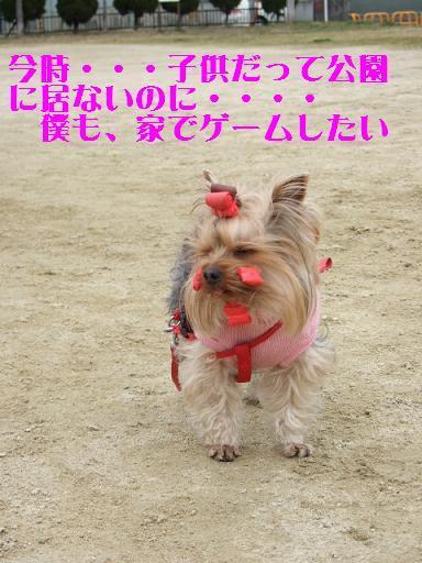 2008_0202no10027.jpg