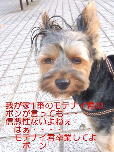 2007_0820no10011.jpg