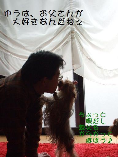 2008_0308no10003.jpg