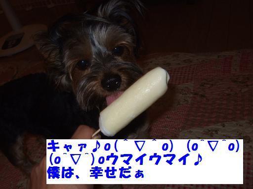 2007_0918no10009.jpg