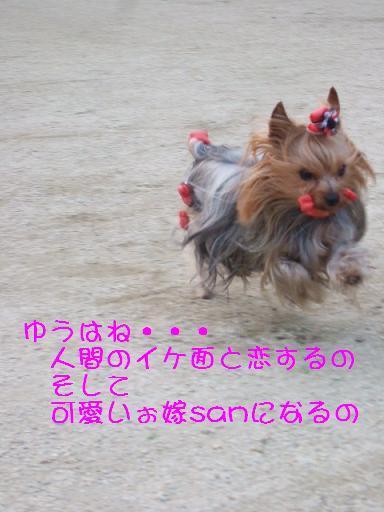 2008_0327no10026.jpg