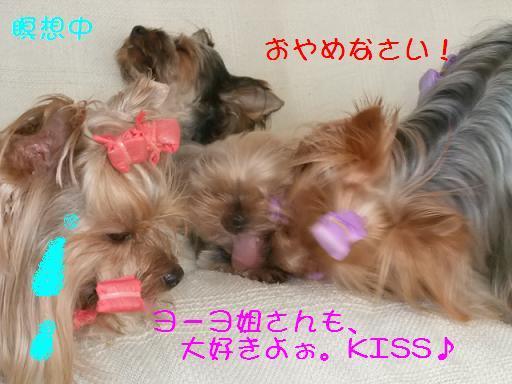2008_0822no10029.jpg