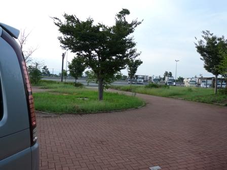 P1050452.jpg