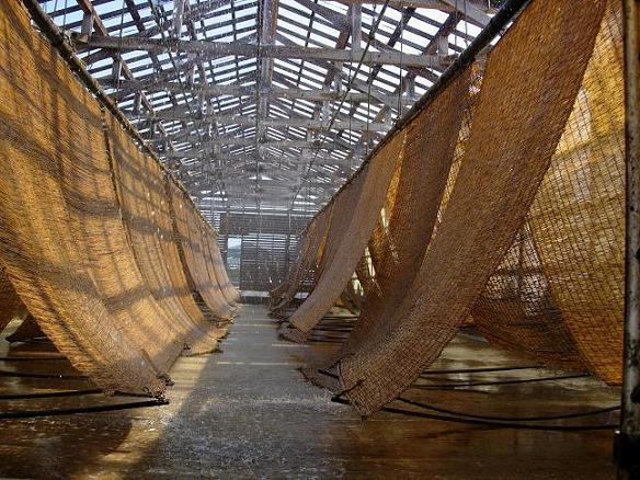 奥能登珠洲市で製造されています!すだれで潮水を濃縮