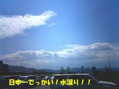 CIMG3462.jpg
