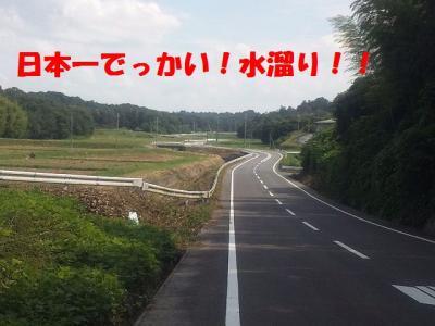 DVC00020_20100701002653.jpg