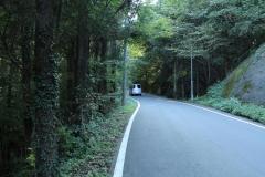 2014秋道志の森002