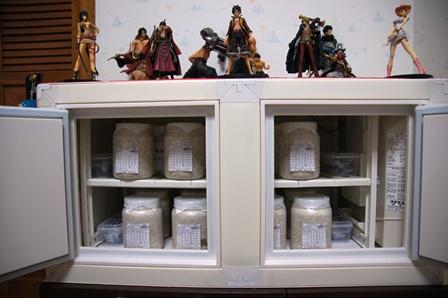 冷やし虫家棚2