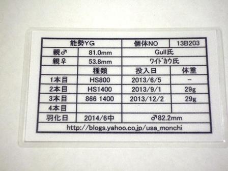 YG822証明