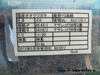 能勢YG1118-1-800