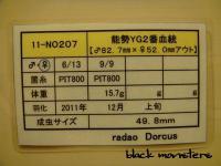 ラダ夫 能勢YG♀498