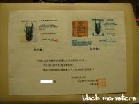 龍 能勢YG♀515証明書