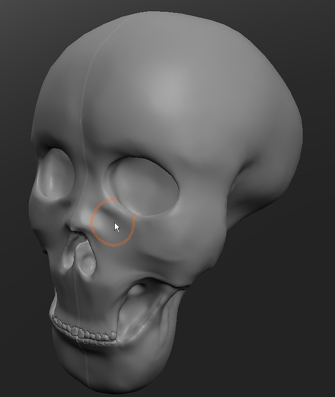 s-頭蓋1