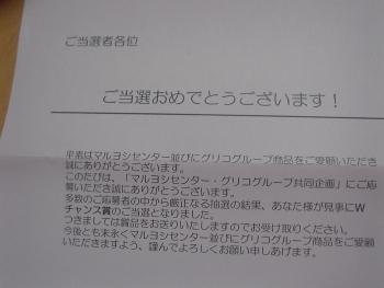 DSC07182.jpg