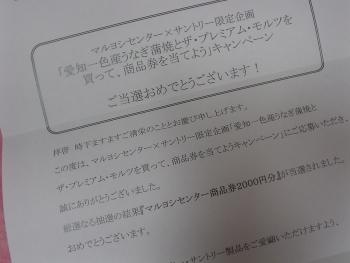 DSC09616.jpg