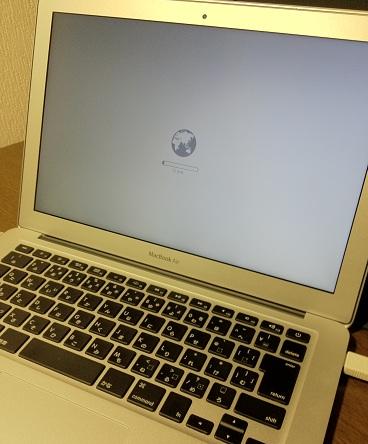 LionMAC2011-01.jpg