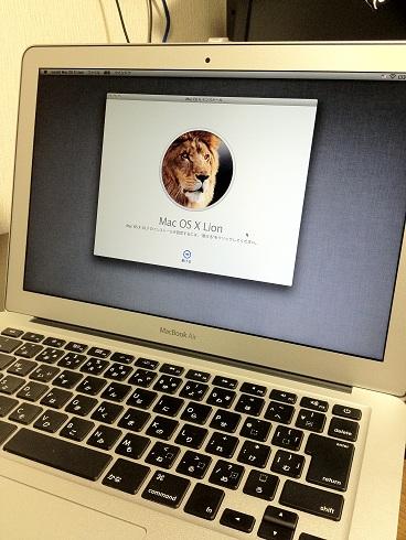 LionMAC2011-02.jpg