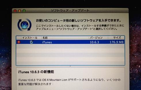 LionMAC2011-06.jpg