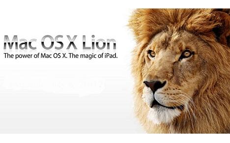 LionMAC2011-07.jpg