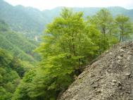 蕎麦粒山・高塚山